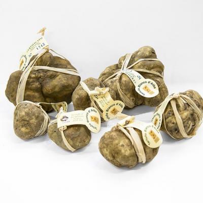 Weißer Trüffel – tuber magnatum pico, Alba Zertifikat, einzeln verpackt €/Gramm
